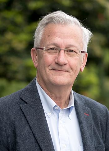 David Morante, Tesorero